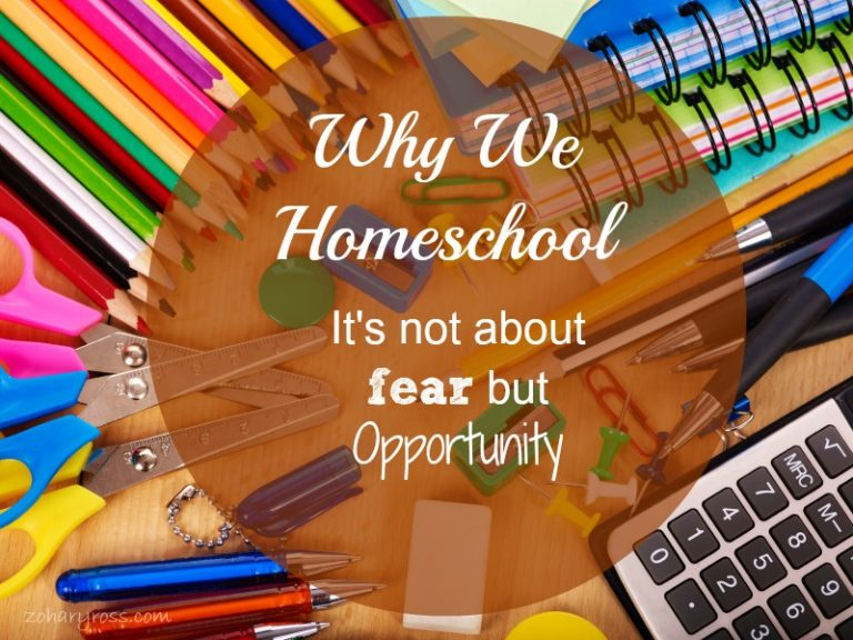 Not About Fear But Opportunity (On Why We Homeschool)